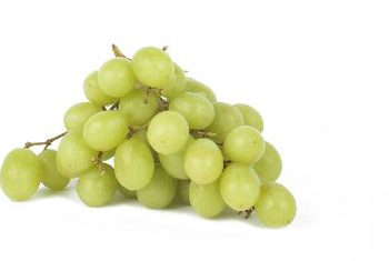 green-grapes-fotolia_58240_xs